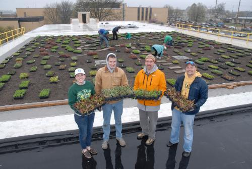 Green Roof group photo