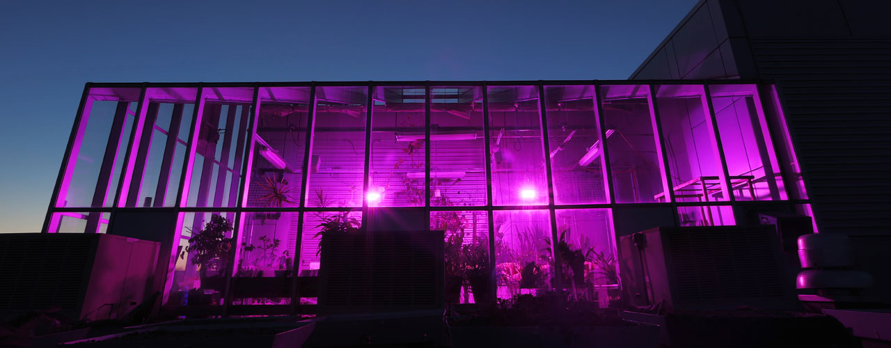 Baker Greenhouse at night