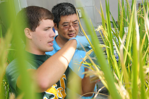 Dr. Jianmin Wang in the Greenhouse